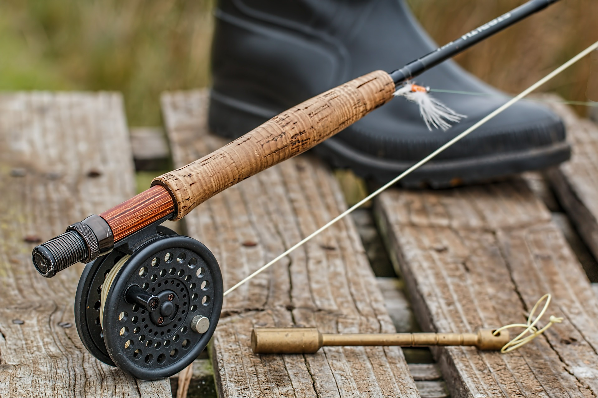 Trout fishing fly reel