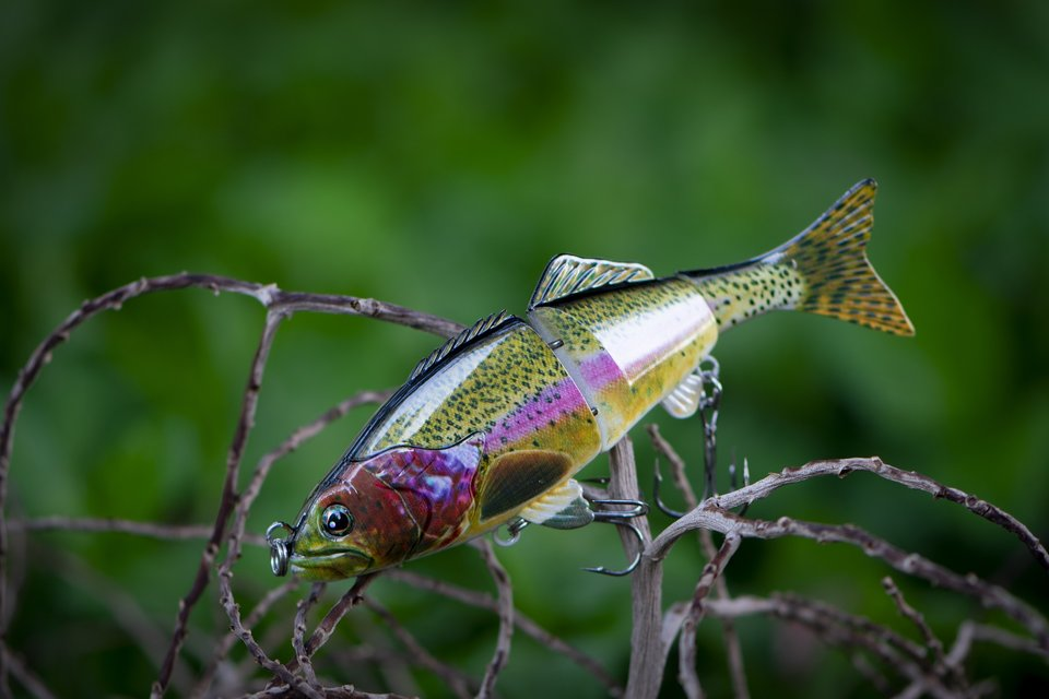A lure for trout fishing