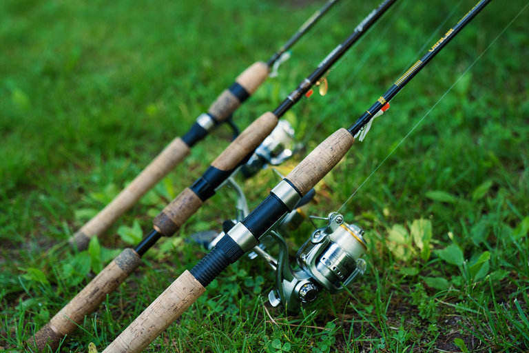 Best Trout Fishing Rods [2020 Updated] | Trout Mastery