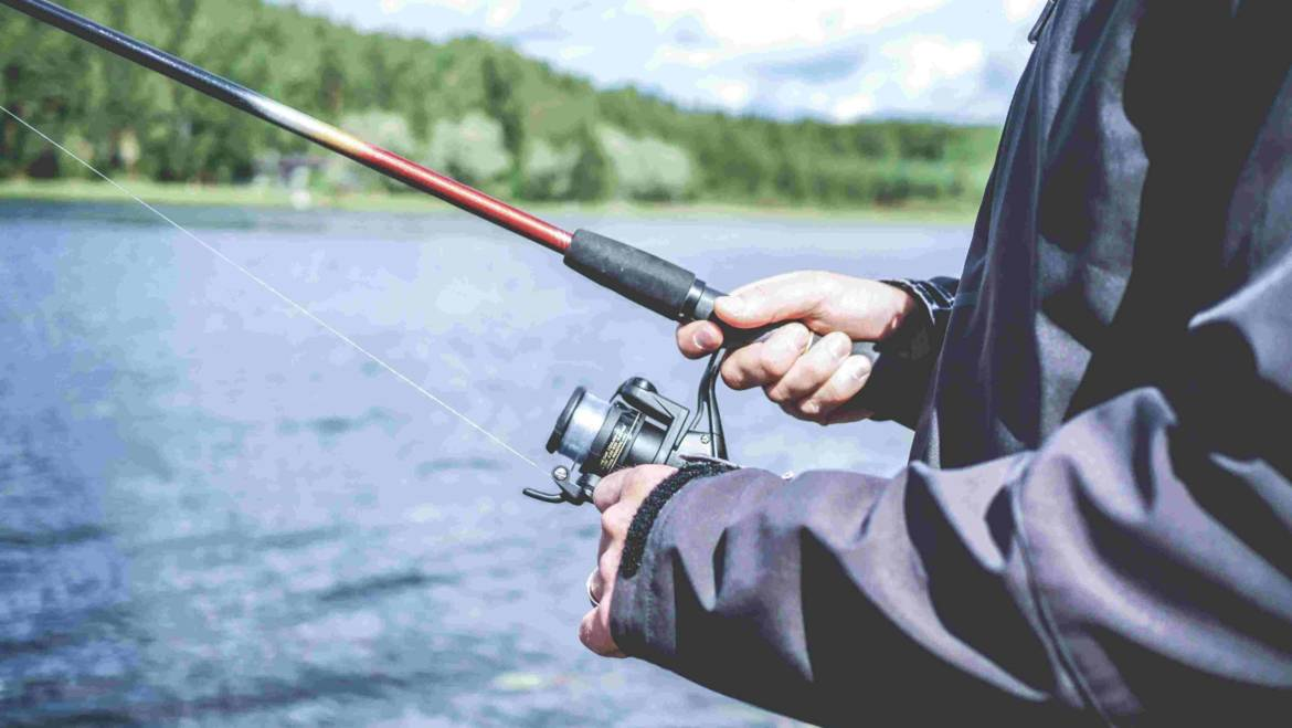 Best trout spinning reels [Updated 2020]