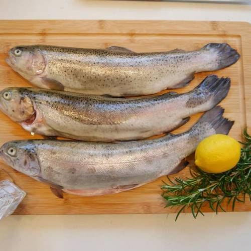 rainbow trout on a cutting board with lemon and thyme