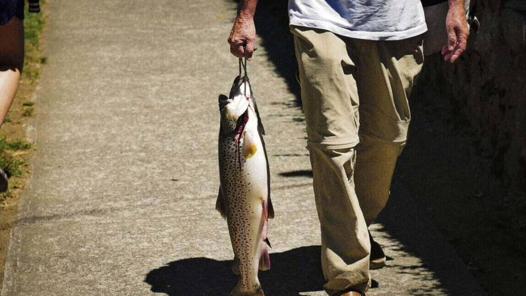 a man walking with Catch stocked trout